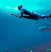 Подводные стрельбы по мишеням