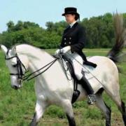 Королевская конная прогулка