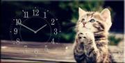 """Настенные часы на холсте """" Котенок """""""