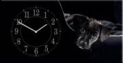 """Настенные часы на холсте """" Мой ласковый и нежный зверь"""""""